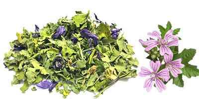 Fiori e foglie di malva tisana